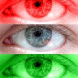 50+ curiosidades sobre los ojos